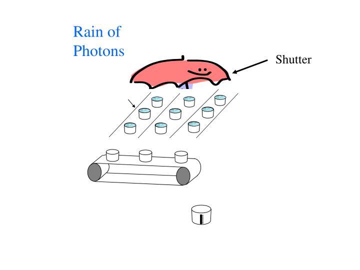 Rain of
