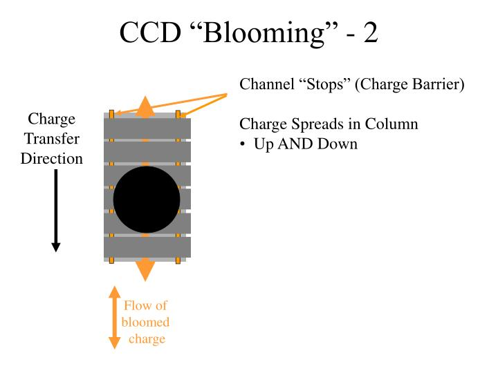 """CCD """"Blooming"""" - 2"""
