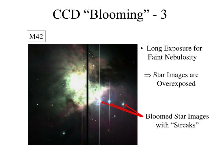 """CCD """"Blooming"""" - 3"""