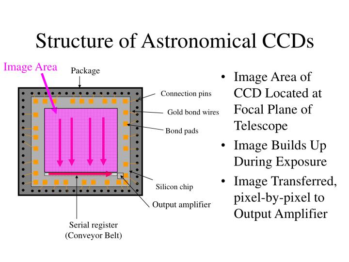 Structure of Astronomical CCDs