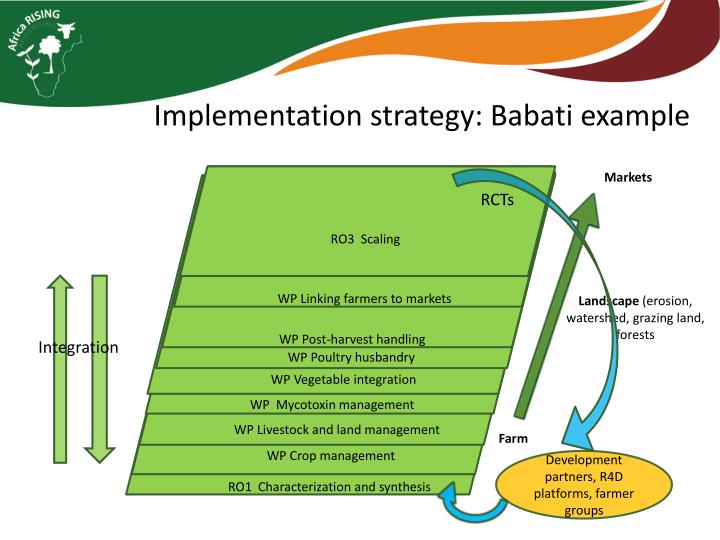 Implementation strategy: Babati example