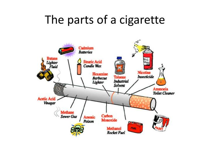 The parts of a cigarette
