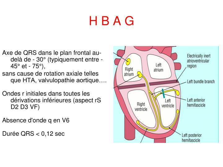 H B A G
