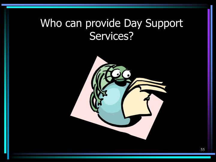 Who can provide Day Support Services?
