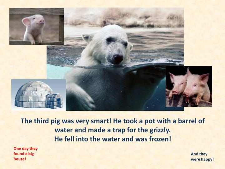 The third pig was very smart! He took a pot with a barrel of water and made a trap for the grizzly.