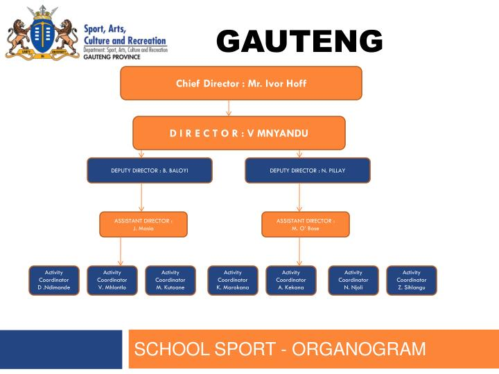 Chief Director