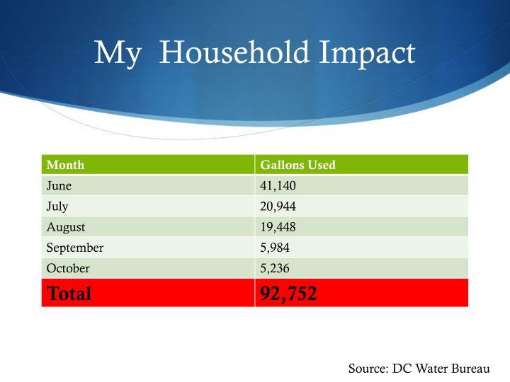 My  Household Impact