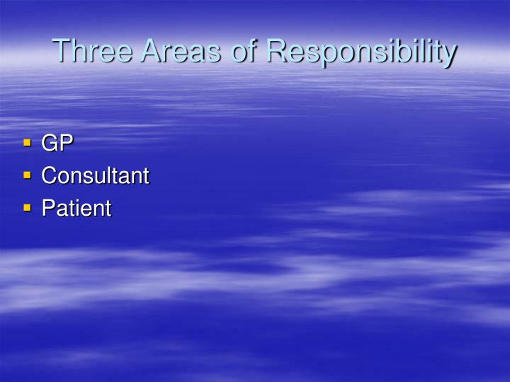 Three Areas of Responsibility