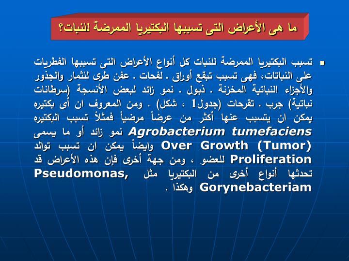 ما هى الأعراض التى تسببها البكتيريا الممرضة للنبات؟