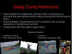 dawg camp adventure