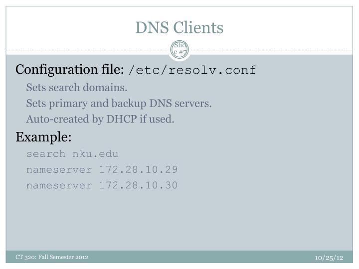 DNS Clients