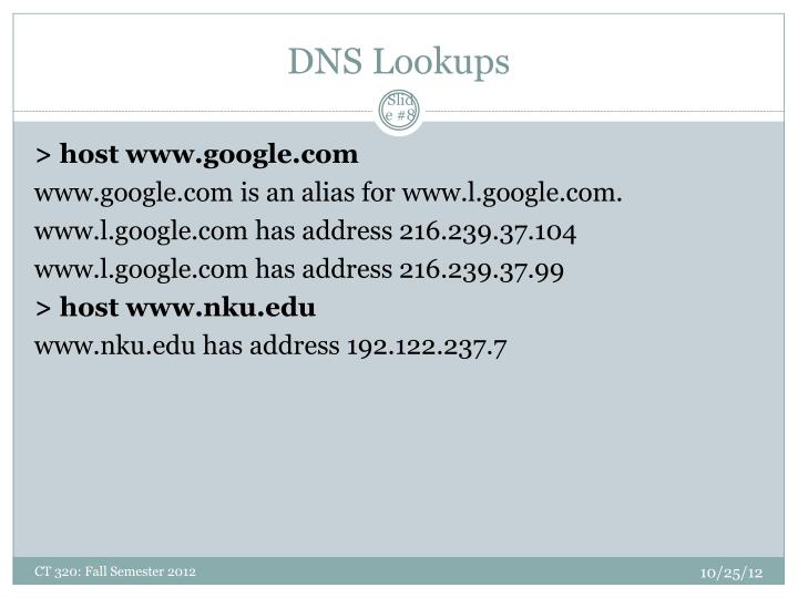 DNS Lookups