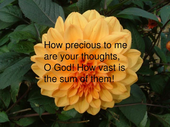 How precious to me are your thoughts, O God! How vast is the sum of them!