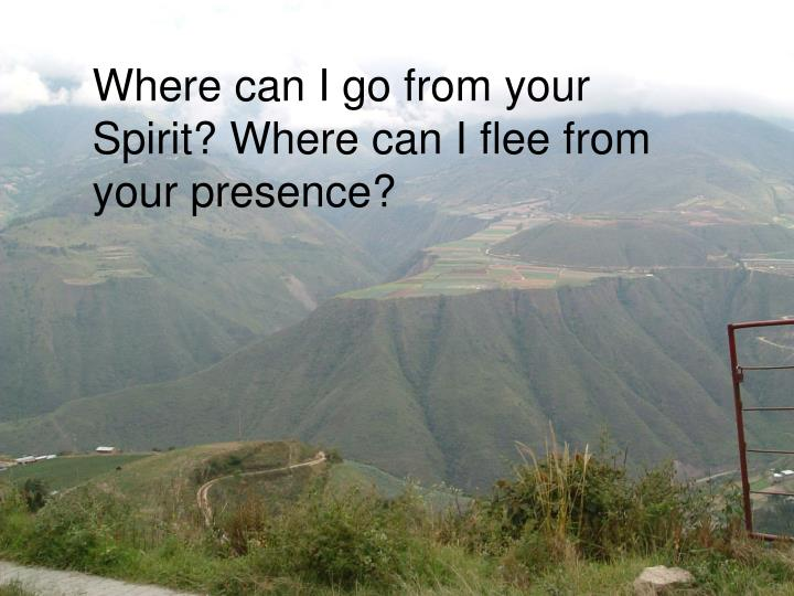 Where can I go from your Spirit? Where can I flee from your presence?