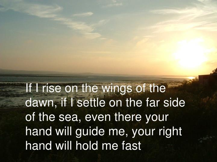 If I rise on the wings of the dawn, if I settle on the far side of the sea, even there your hand will guide me, your right hand will hold me fast