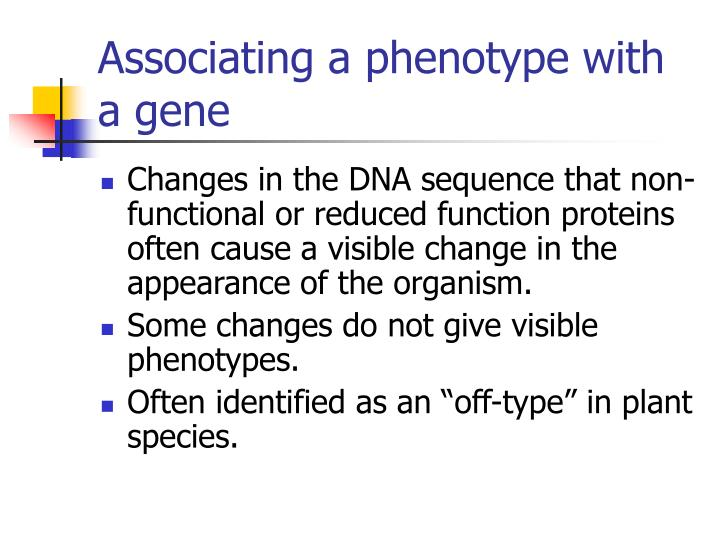 Associating a phenotype with a gene