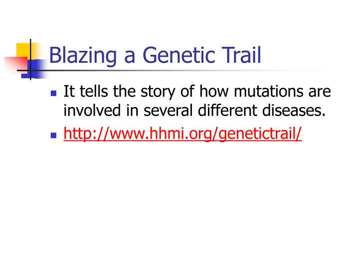 Blazing a Genetic Trail