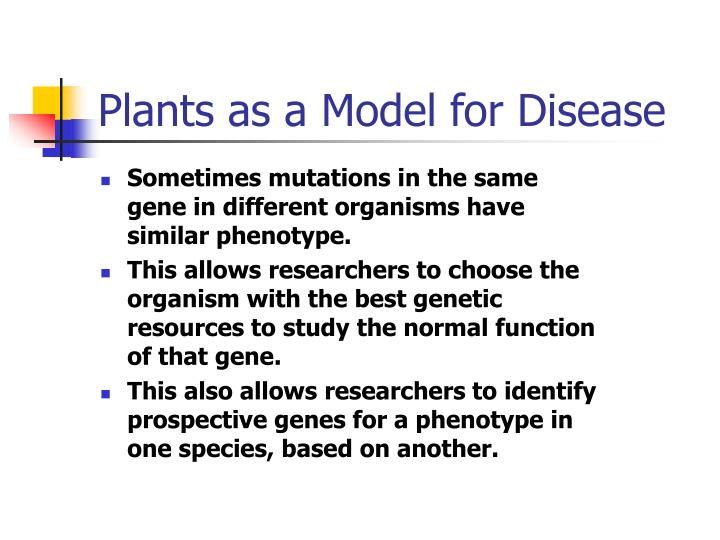 Plants as a Model for Disease