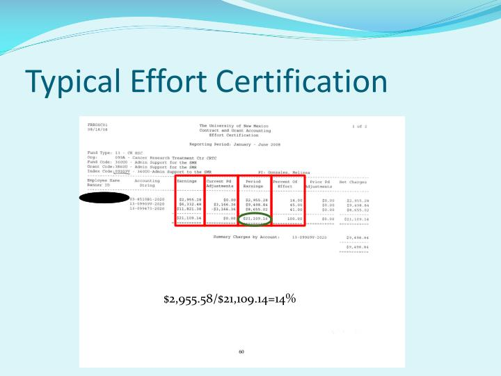 Typical Effort Certification