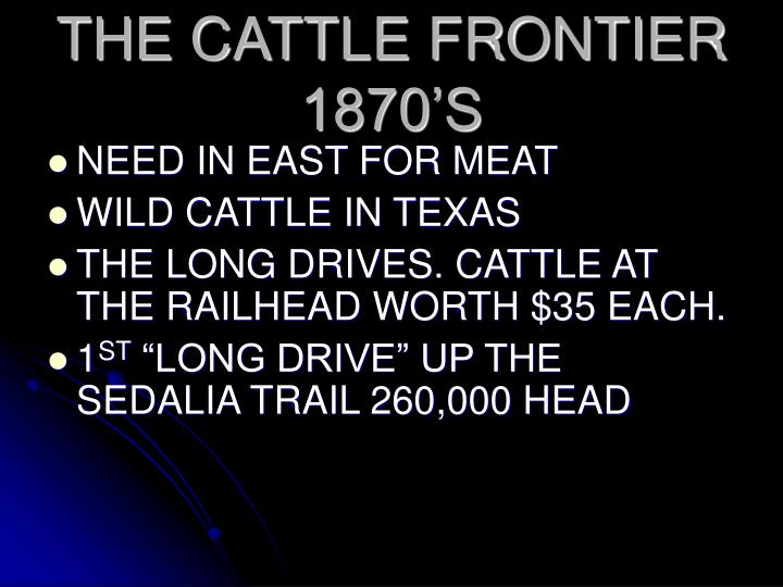 THE CATTLE FRONTIER 1870'S