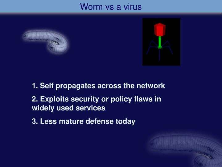 Worm vs a virus