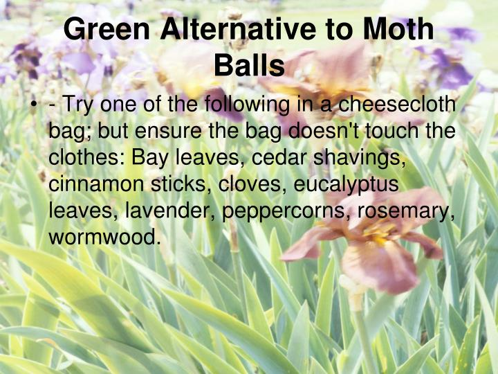 Green Alternative to Moth Balls