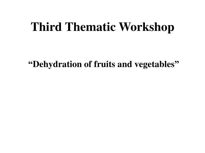 Third thematic workshop