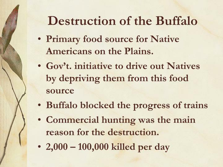 Destruction of the Buffalo