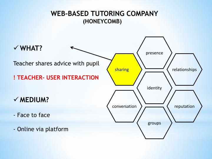 WEB-BASED TUTORING COMPANY