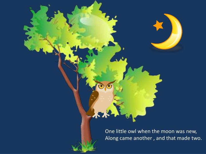 One little owl when the moon was new,