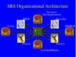 srs organizational architecture