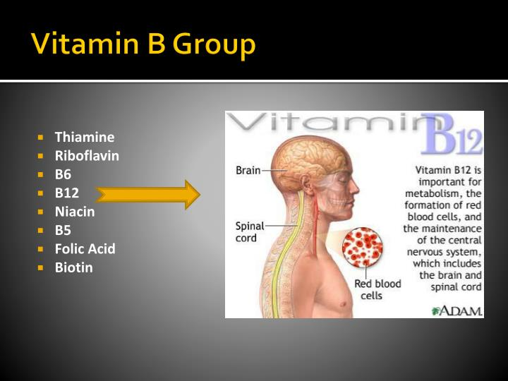 Vitamin B Group
