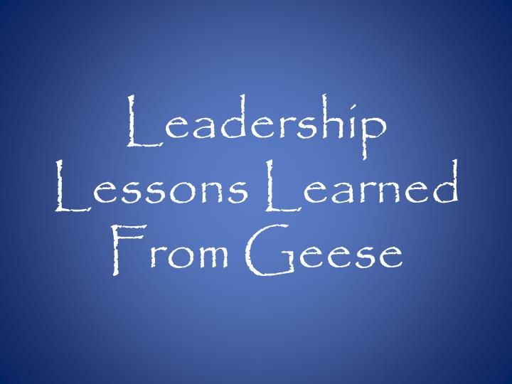 Leadership lessons learned from geese
