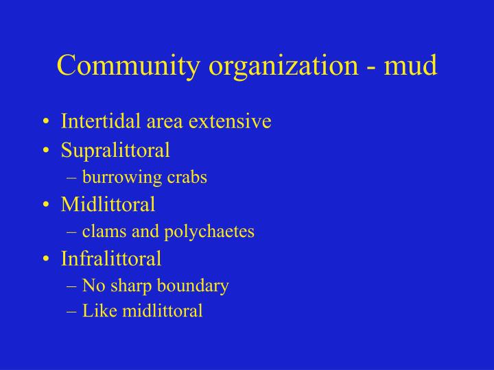 Community organization - mud