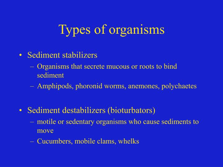 Types of organisms