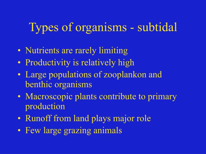 Types of organisms - subtidal