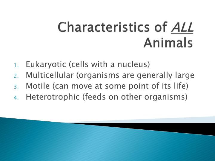 Characteristics o f all animals