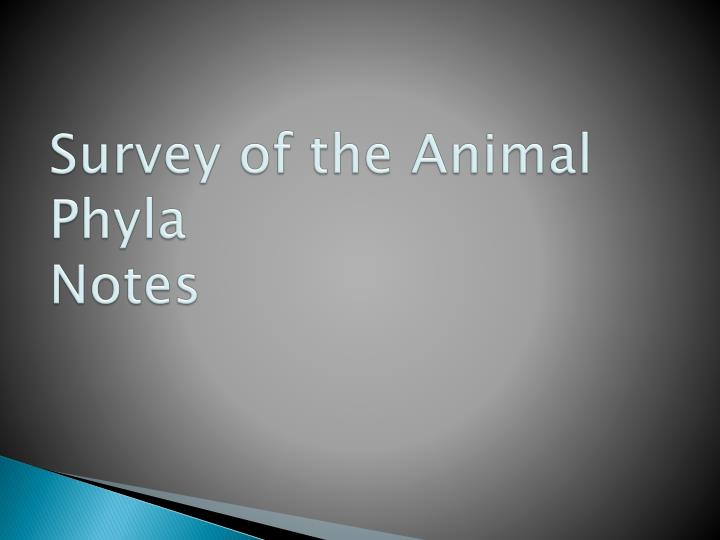 Survey of the animal phyla notes