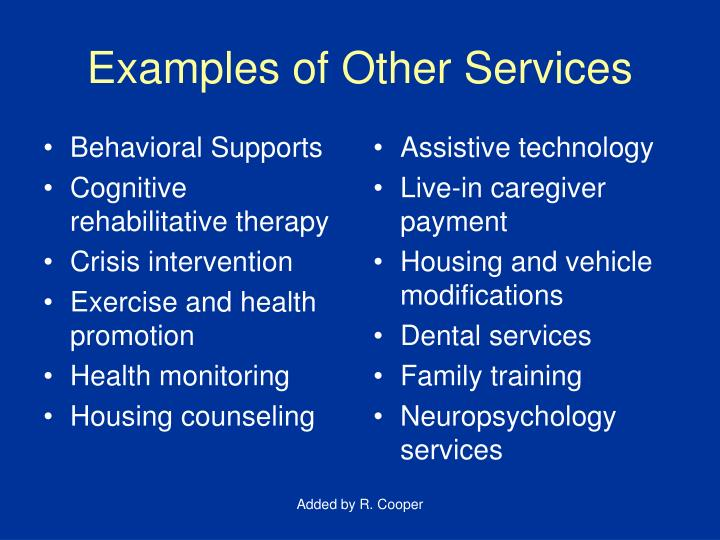 Examples of Other Services