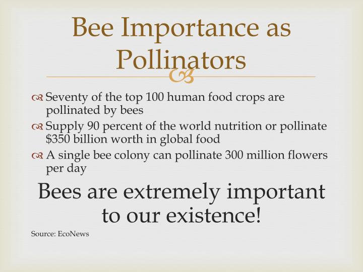 Bee Importance as Pollinators
