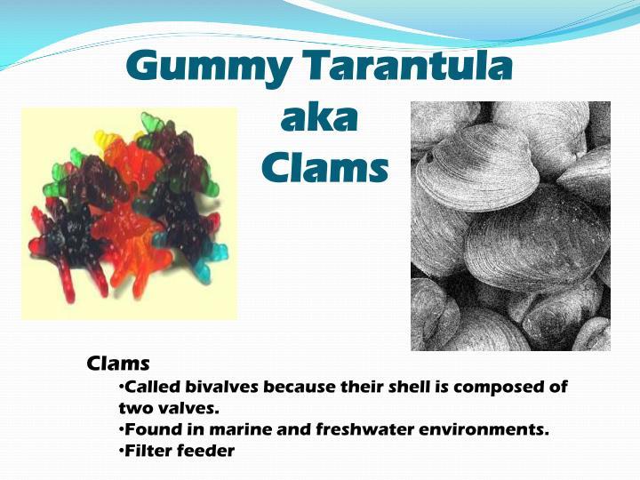 Gummy Tarantula