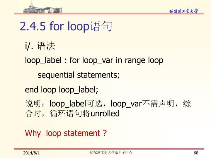 2.4.5 for loop