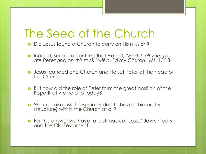 The seed of the church