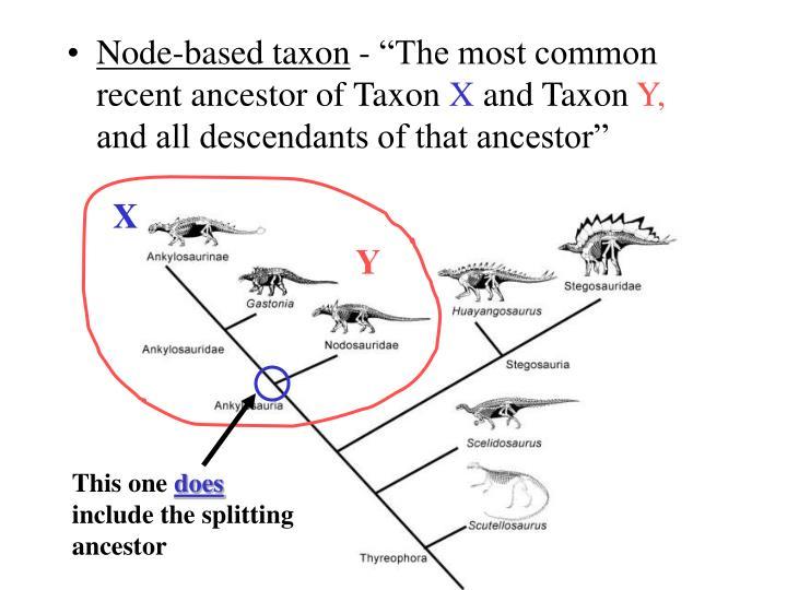 Node-based taxon