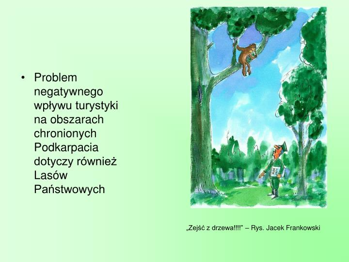 Problem negatywnego wpływu turystyki     na obszarach chronionych Podkarpacia dotyczy również Lasów Państwowych
