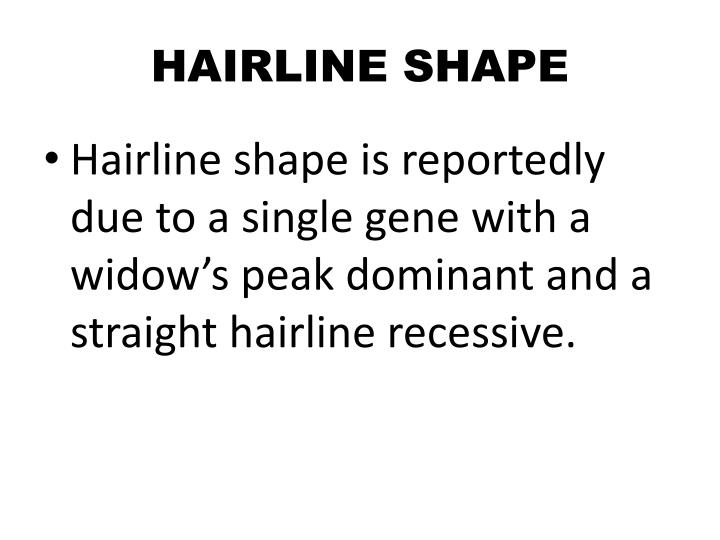 HAIRLINE SHAPE