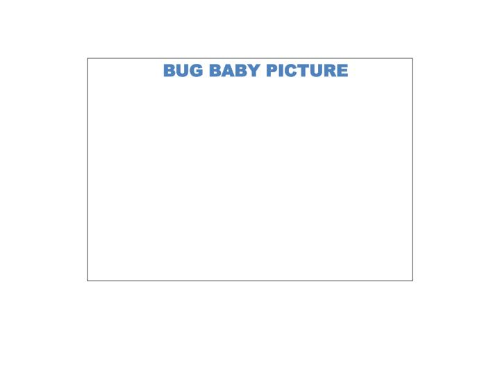 BUG BABY PICTURE