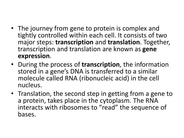 The journey from gene to protein is complex and tightly controlled within each cell. It consists of two major steps:
