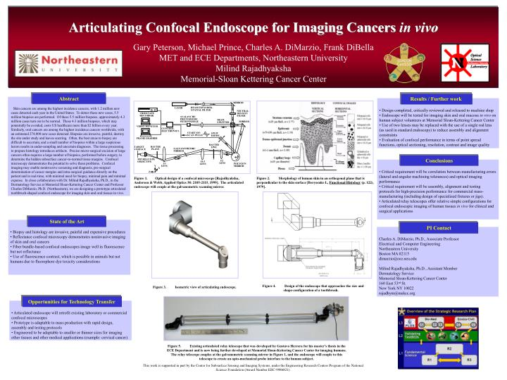 Articulating confocal endoscope for imaging cancers in vivo