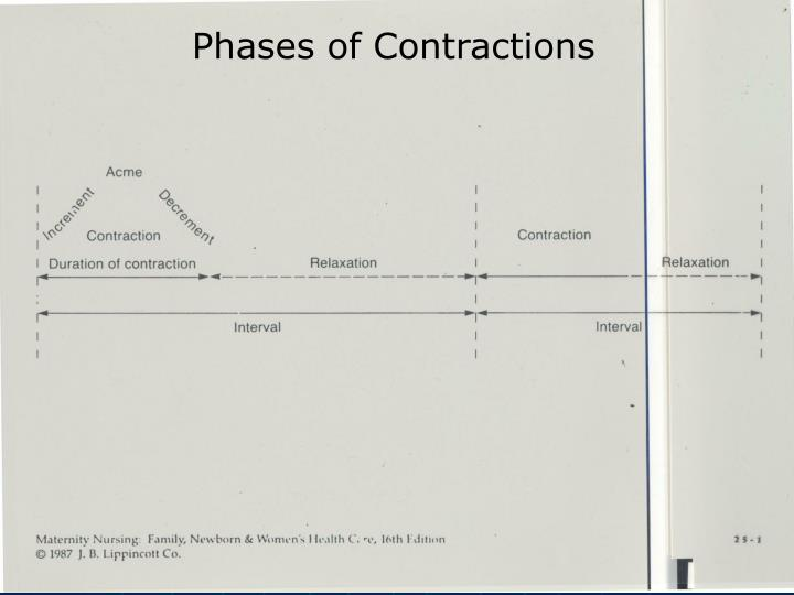 Phases of Contractions